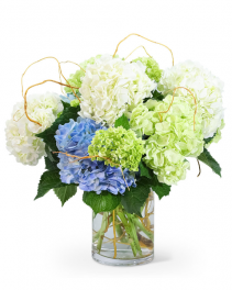 Hello, Hydrangea! Flower Arrangement