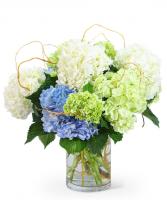 Hello, Hydrangea! Flower Arrangement