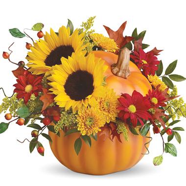 Hello Pumpkin! Fall