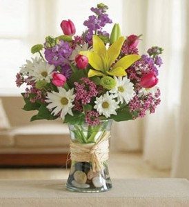 Hello Daisy Spring Vase