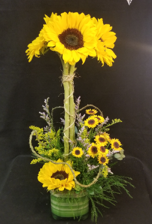 Hello Sunshine Topiary Topiary