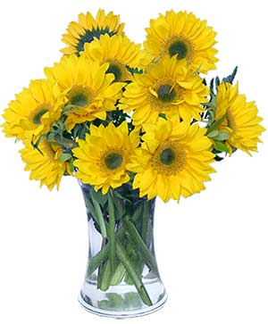 Hello Sunshine! Vase of Flowers in Zionsville, IN | ZIONSVILLE FLOWER COMPANY