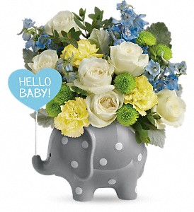 Hello Sweet Baby - Blue Teleflora in Springfield, IL | FLOWERS BY MARY LOU