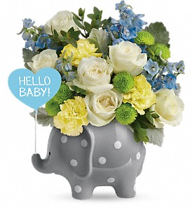Hello Sweet Baby Blue Tnbo7 1a In Fort Worth Tx Davis Floral Designs