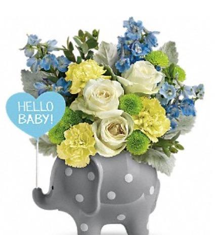 Hello Sweet Baby Blue   TNBO7-1B