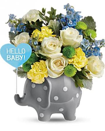 Hello Sweet Baby Elephant New Baby Flowers