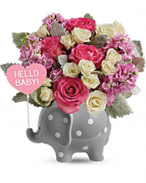 Hello Sweet Baby Elephant New Baby Flowers