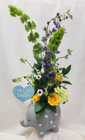 Hello Sweet Baby Fresh arrangement in keepsake elephant in Bolivar, MO | The Flower Patch & More