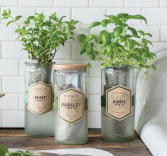 Herb (Basil, Parsley, Minto, Cilantro) Grow Kit