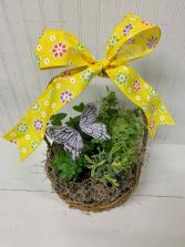 Herb Garden Basket