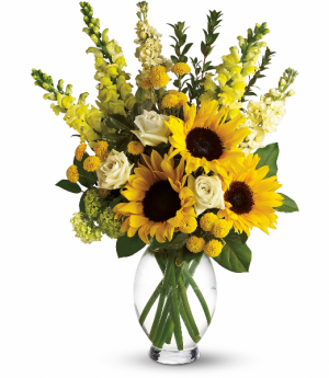 Here Comes the Sun T152-1 in Rossville, GA | Ensign The Florist