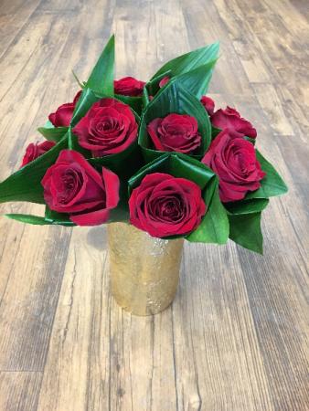 Hi-Style Roses