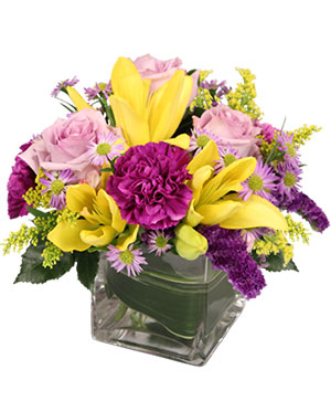 HIGH IMPACT Arrangement in Snellville, GA | SNELLVILLE FLORIST