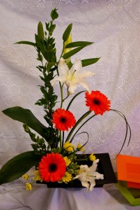 High Style  High Style Arrangement in Corner Brook, NL | The Orchid