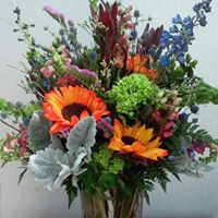 Hill Country Wildflowers - Designer's Choice