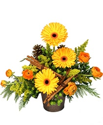 Hints of Cinnamon Floral Arrangement
