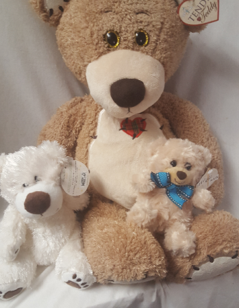 Send a BEAR! SMALL one is $7.95 (may vary in color small one comes in different colors, tan, brown white), white middle size bear select $12.95, large bear select $29.95.