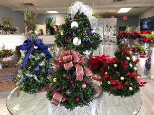Holiday Boxwood Trees Boxwood Tree in Mattapoisett, MA | Blossoms Flower Shop