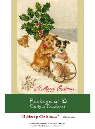 """Holiday Card Set Pack of 10 Cards """"A Merry Christmas""""  Blank Inside"""