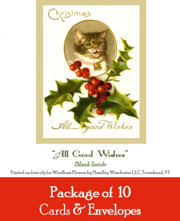 """Holiday Card Set Pack of 10 Cards """"All Good Wishes""""  Blank Inside"""