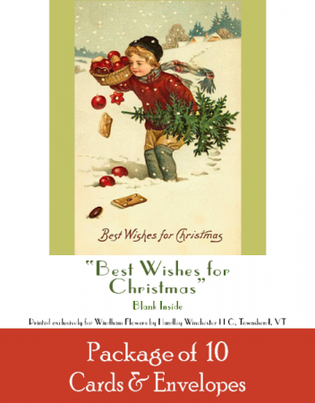 """Holiday Card Set Pack of 10 Cards """"Best Wishes for Christmas""""  Blank Inside"""
