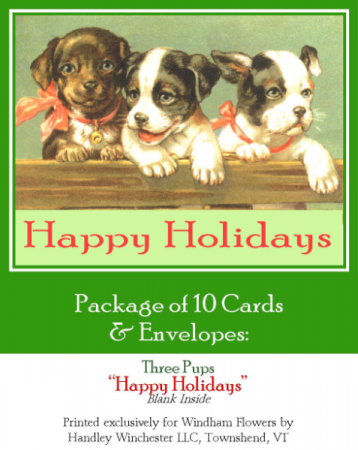 """Holiday Card Set Pack of 10 Cards """"Loveliest Christmas""""  Blank Inside"""