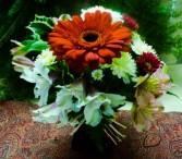 Holiday Gerbera Vase Vase Arrangement
