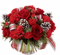 Holiday Globe:GD-C11 Christmas
