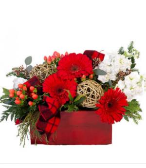 Holiday glow Fresh arrangement in Mount Pearl, NL   FLORAL-ELEGANCE
