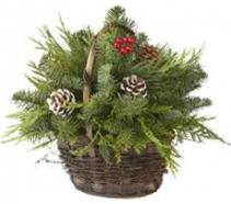 Holiday Greens Basket Basket
