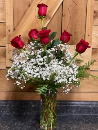 Holiday Half Dozen Red Rose  Vased
