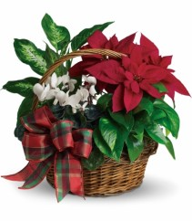 Holiday Homecoming Basket EN-10W