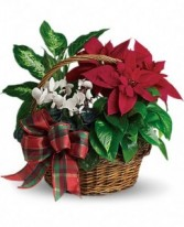 Holiday Homecoming Basket Garden Basket