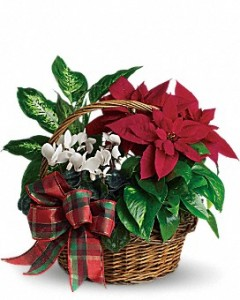 Holiday Homecoming Planter
