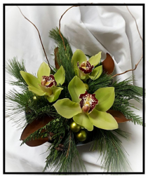 Holiday Orchids