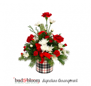 Holiday Plaid Bud & Bloom Signature Arrangement in Franklin, IN | BUD AND BLOOM SOUTH INC.