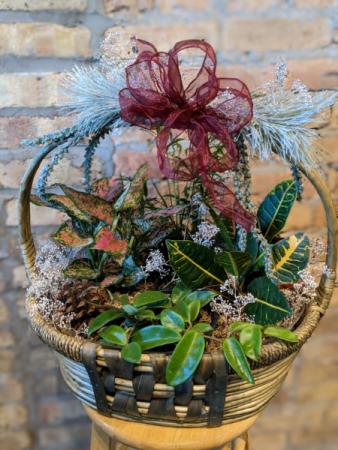 Holiday Plant Basket