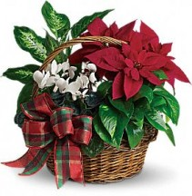 Holiday Planter Basket