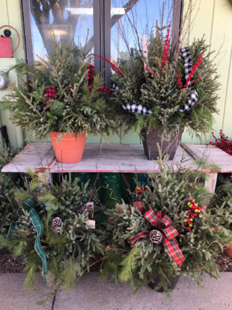 Holiday Porch Pot