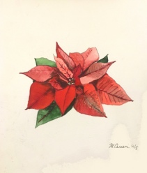 Holiday Red Watercolor
