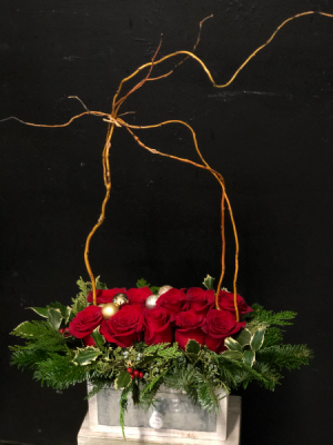 Holiday Reds and Greens Red roses and Holiday PInes  in Key West, FL | Petals & Vines