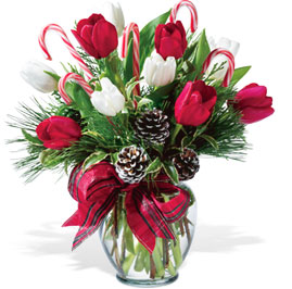 Holiday Tulips Vased Greens and Tulips with Candy Canes