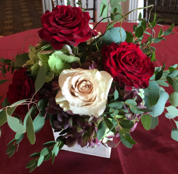 Holiday Wonder whitewashed wooden box