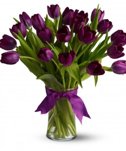Holland Purple Tulips  Arrangement