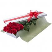 Hollywood Roses Presentation Box