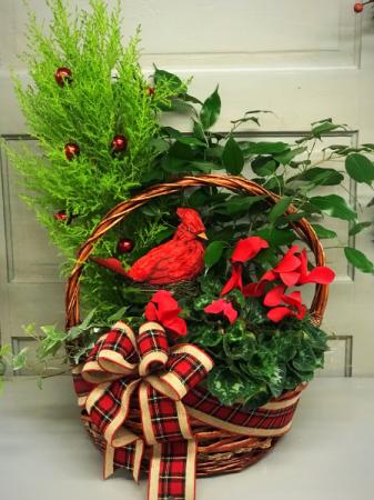 Home for Christmas  Basket Garden