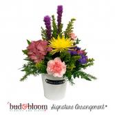 Home & Garden Bud & Bloom Signature Arrangement