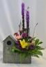 HOME TWEET HOME FRESH FLOWER ARRANGEMENT - LIMITED QTY