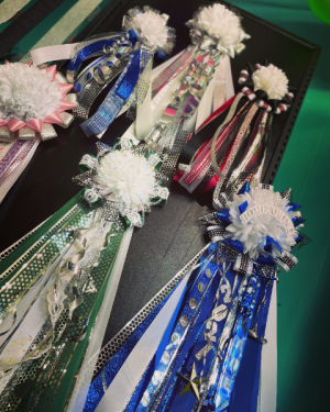 HOMECOMING MUMS AND GARTERS  in Bryan, TX   NAN'S BLOSSOM SHOP