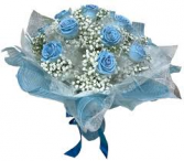 HONG KONG DOZEN BLUE ROSES 2 WRAPPED BOUQUET